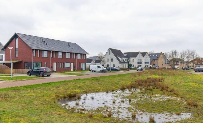 Borger   12 woningen   Kranssteen